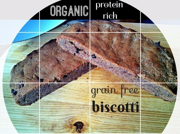grain-free-protein-biscotti.jpg